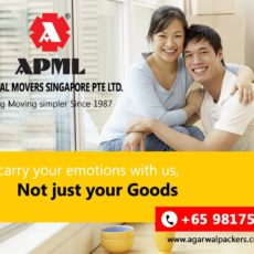 Agarwal Movers Singapore