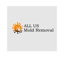 Logo - All US Mold Removal and Remediation Amarillo TX
