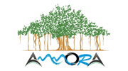 ammora_travels