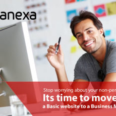 avanexa website designing
