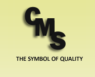cms inspection services