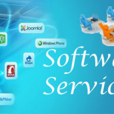 software-services